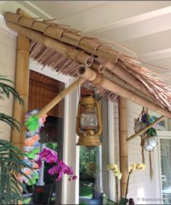 Halmtak av bambuhandflata